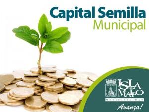 capital semilla