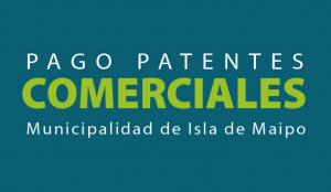 pago patentes
