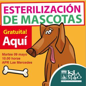 esterilizacion las mercedes perros