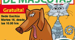 perros y gastos esterilizacion gacitua