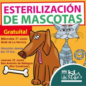 perros y gastos esterilizacion lo herrera y naltagua